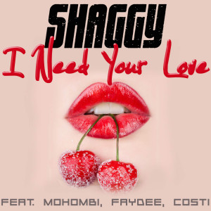 I Need Your Love  -  Shaggy